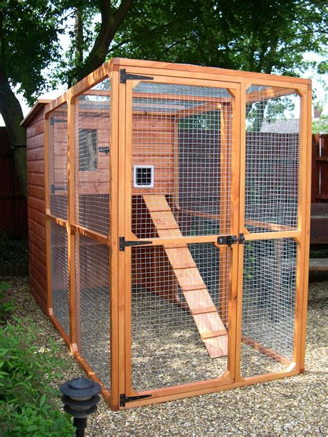 building  catio   cat enclosure whitburn