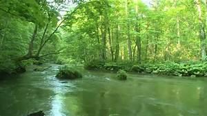RICHARD CLAYDERMAN- 10 TEMAS 26:58 MIN - YouTube