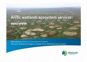 Arctic Wetlands Ecosystem Services Overview  Tatiana