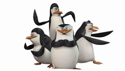 Madagaskaru Pingwiny Madagascar Penguins Marvel Movie Się