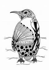 Penguin Intricate sketch template
