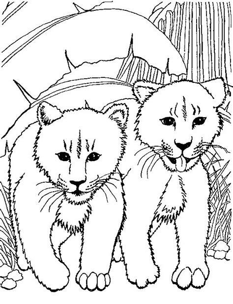 Baby Leeuw Kleurplaat by Kleurplaten En Zo 187 Kleurplaten Leeuwen