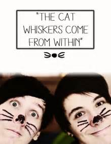 dan and phil cat whiskers the world s catalog of ideas