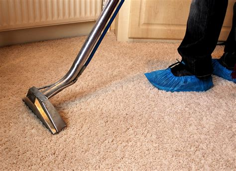 all about rug carpet cleaning service a tract