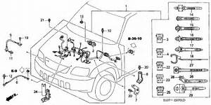 Engine Wire Harness For 2000 Honda Cr