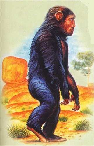 yowie  monster pictures