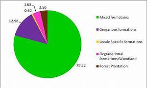 Pie Chart Showing Distribution Of Level 1 Forest