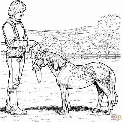 Pony Coloring Shetland Realistic Horse Ausmalbilder Kleurplaten