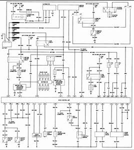Diagram  Nissan D21 Wiring Diagram Light Full Version Hd