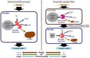 A2f Process  Anaerobic