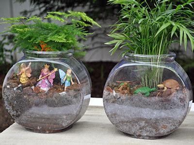 fish bowl terrariums pictures   images