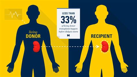 Kidney Transplants Before Dialysis | Michigan Health Lab