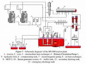 Bn-800 Reactor Plant