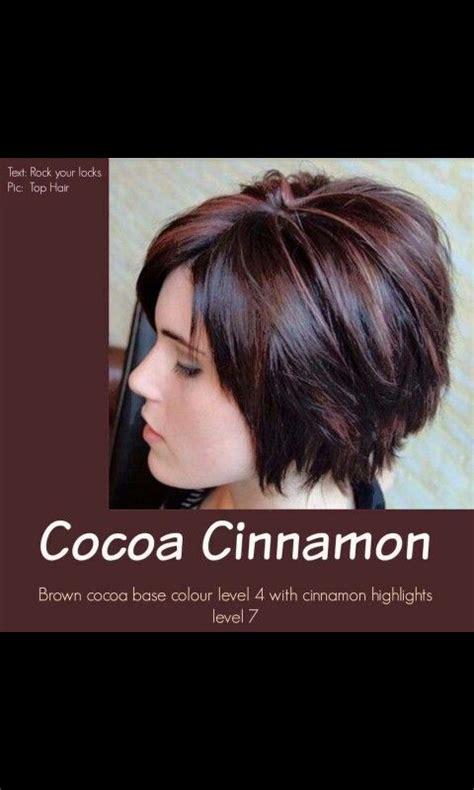 cinnamon brown hair color cocoa cinnamon brown hair color hair hair styles