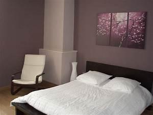 Peinture Pour Chambre Adulte : charmant d coration de chambre d adulte ~ Dailycaller-alerts.com Idées de Décoration
