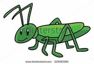 Grasshopper Locust clip art Free Vector / 4Vector