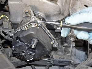 1998-2002 Honda Accord Distributor Cap Replacement  1998  1999  2000  2001  2002