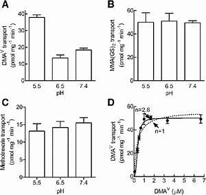Effect Of Ph On Mrp4