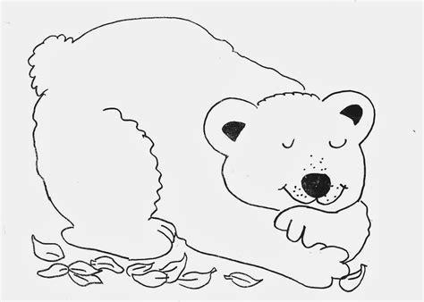 orso da colorare disegni da colorare imagixs car
