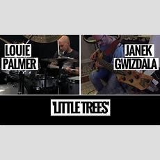Louie Palmer & Janek Gwizdala  'little Trees' Youtube