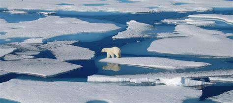 Study reveals how Arctic Ocean drives ice melt – Sydney ...