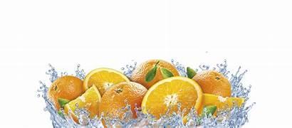 Orange Fruit Ugli Transparent Imagenes Citrus Pluspng
