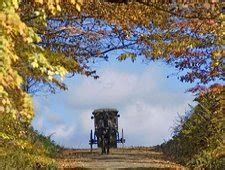 info  wayne county ohio amish country attractions