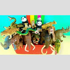 Learn About Wild Animals And Their Names  Zoo Animals  Kids Educational Toys  Mammoth Youtube