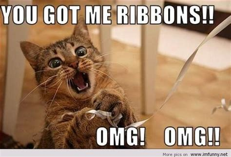 Scared Cat Meme - scared