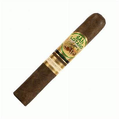 Lotano San Robusto Requiem Parkway Cigars