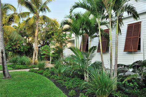 tropical landscape design ideas tropical landscaping landscape tropical with grass brown shutters