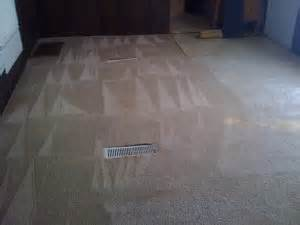 Rug Cleaning Raleigh by Carpet Cleaning Raleigh Nc Raleigh Carpet Cleaner
