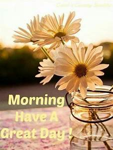 morning a great day pictures photos and images for