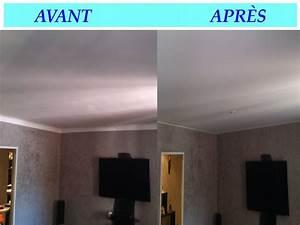 Faux Plafond Autoportant : competir en el coche salon plafond bas knauf ~ Nature-et-papiers.com Idées de Décoration