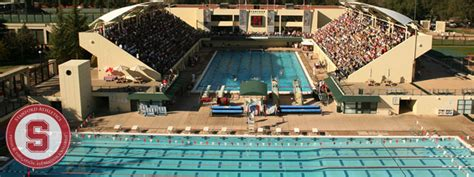 Summer Swimming Camp Stanford University 2014 Posting In
