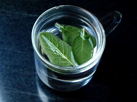 cuisiner la sauge cuisiner avec la sauge 28 images une infusion de sauge