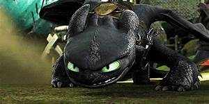 Night Light Dragon Httyd Httyd Httyd Httyd2 How To Train Your Dragon