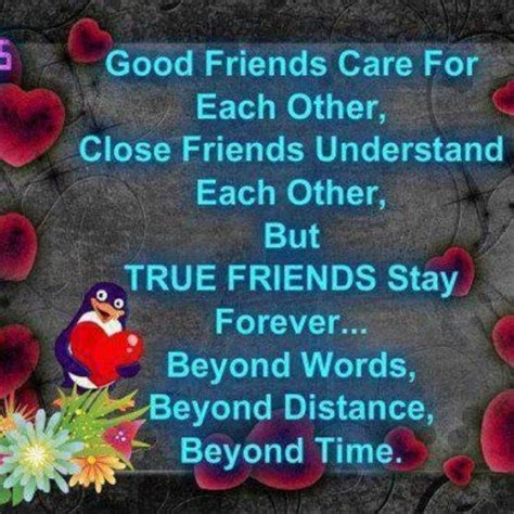 True Friend Quotes 20 True Friends Quotes Sayingimages