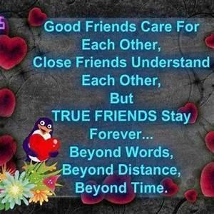 Great Friend Quotes True Friendship. QuotesGram