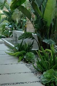 les 25 meilleures idees concernant bananiers sur pinterest With superb amenagement terrasse piscine exterieure 15 les 25 meilleures idees concernant amenagement paysager
