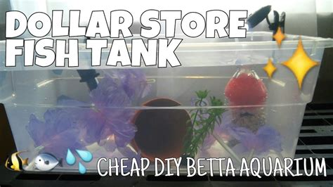 how to store fish dollar store fish tank how to make a complete betta aquarium for less than 15 youtube