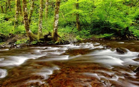 Hd Wallpapers River Nature Beautiful Desktop Backgrounds ...