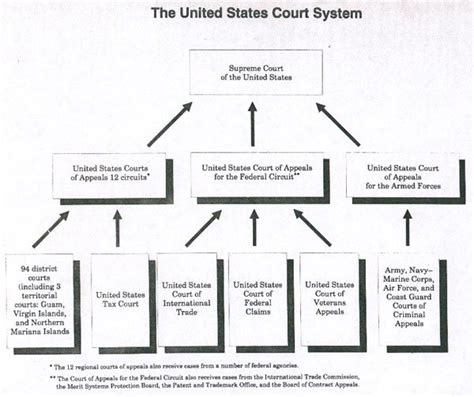 Structure Federal Court System