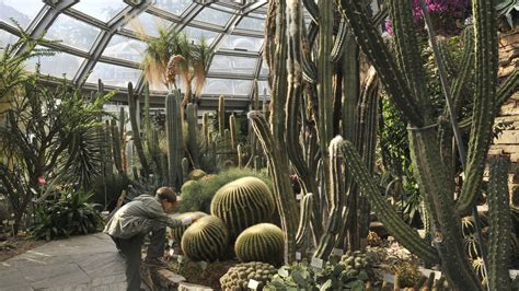 Optiker Botanischer Garten Berlin by Botanischer Garten Berlin B Z Berlin