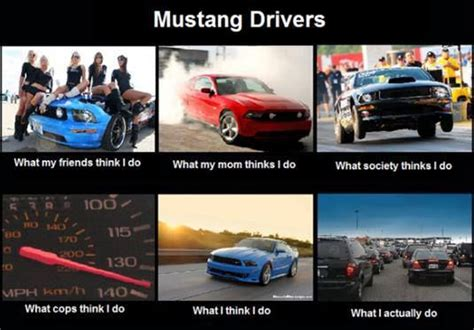 Cars Memes - funny mustang meme sexton ford fun pinterest funny lol and mustangs
