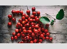 11 Amazing Health Benefits Of Hawthorn Berries