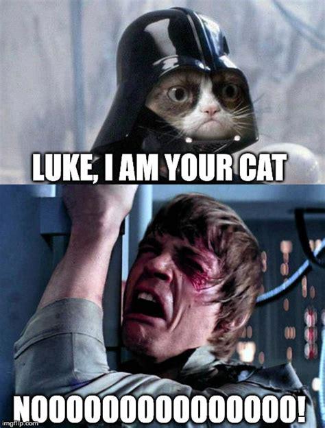 Grumpy Cat Star Wars No Imgflip