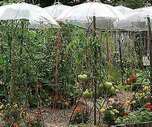 Comment Tuteurer Les Tomates : comment d corer son potager bassin sculpture cabane ~ Melissatoandfro.com Idées de Décoration