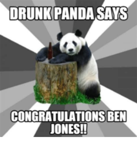 Drunk Panda Meme - drunk panda says congratulations ben jones pandas meme on sizzle