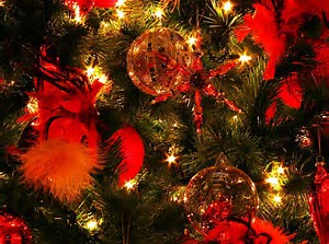 クリスマス 画像 に対する画像結果